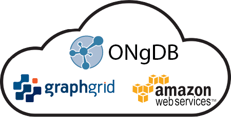 ONgDB in GraphGrid on AWS